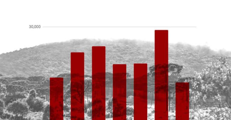 derrubada-mata-atlantica: Ranking dos estados que mais desmatam no Atlas da Fundação SOS Mata Atlântica